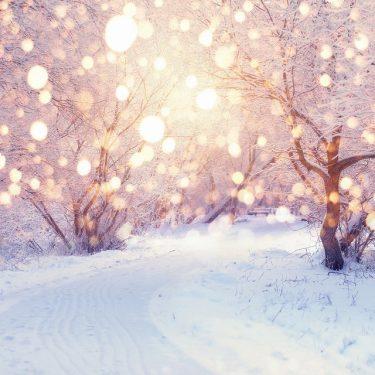 女子は雪が好き?!